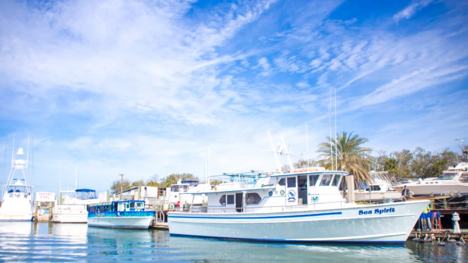 Daytona beach photographer captured pictures in Ponce Inlet of sea Spirit fishing charter