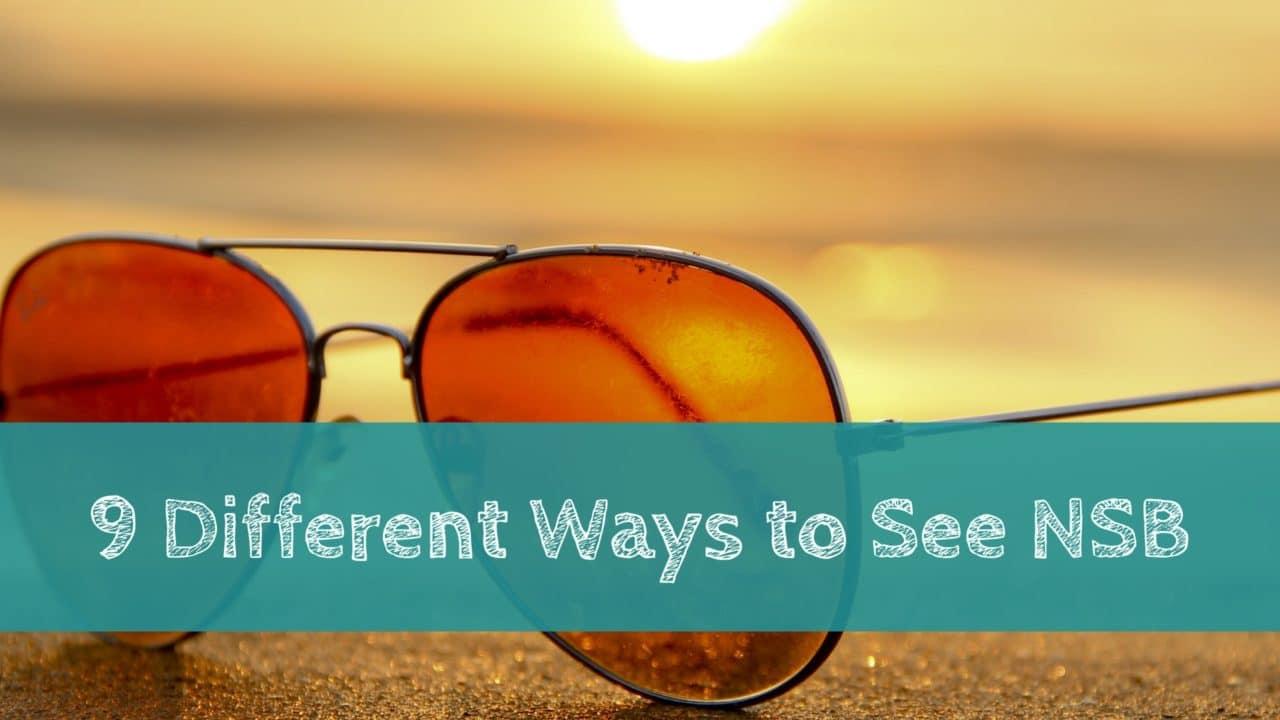 New Smyrna Beach blog title with sunglasses
