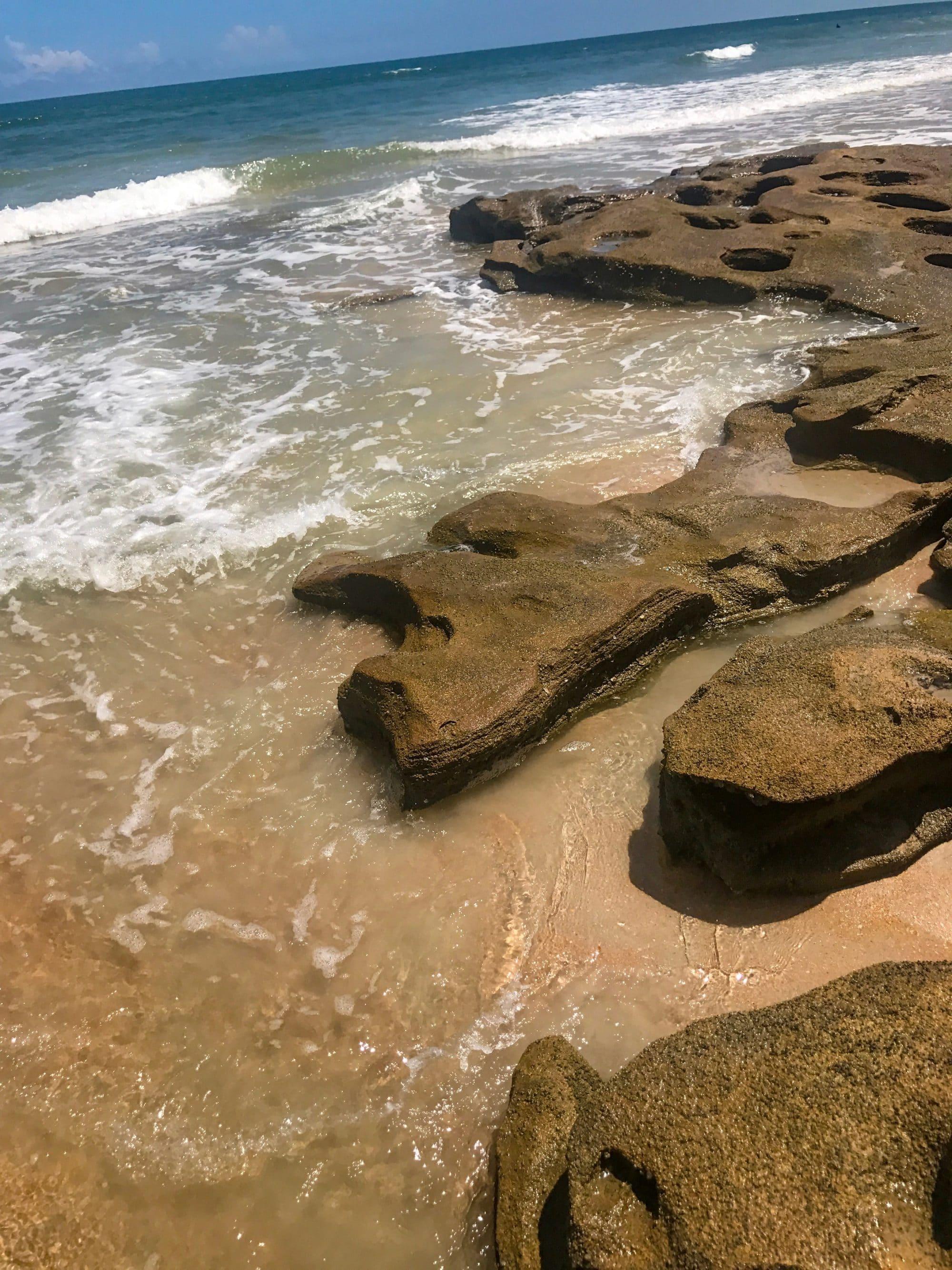 Ormond beach photography of Washington oaks state park near marineland. Coquina rock formations on the east coast of Florida.