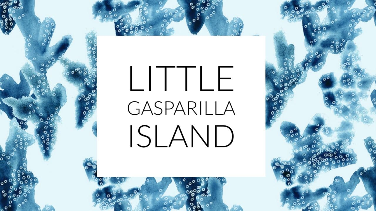 graphic of little Gasparilla Island for a photography blog post using black font and a blue illustration of coral