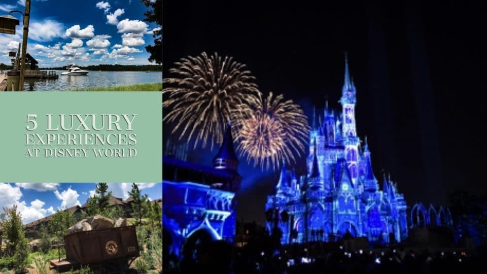 Blog header for luxury experiences at Disney