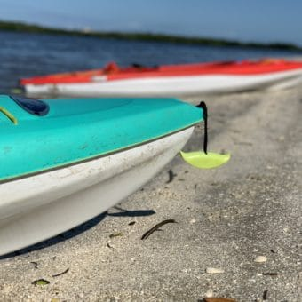 kayaking new smyrna beach